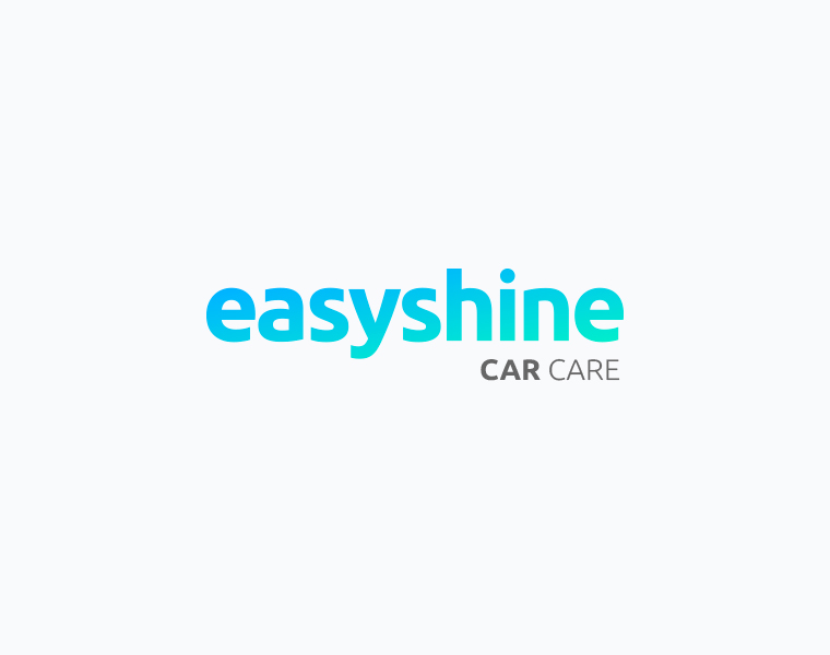 Easy Shine logo